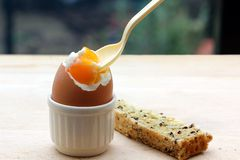 Boiled egg Royalty Free Stock Photography