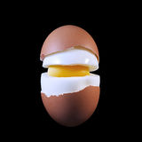 Boiled egg in a cut. All components of the eggs shown Closeup Royalty Free Stock Photography