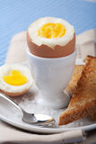 Boiled egg in egg cup Royalty Free Stock Images