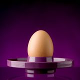 Boiled egg in egg cup Royalty Free Stock Photography