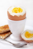 Boiled egg in eggcup Royalty Free Stock Images