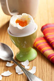 Boiled egg in eggcup Royalty Free Stock Photos