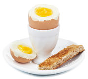 Boiled egg in eggcup isolated royalty free stock photo