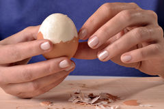 Boiled egg. Female hand opening boiled egg Royalty Free Stock Image
