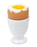 Boiled Egg In Egg Cup Isolated Royalty Free Stock Photography