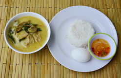 Boiled egg on rice and spicy fish ball green curry. Boiled egg on plain rice and spicy fish ball green curry Stock Photos