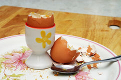 Boiled egg shell on plate Royalty Free Stock Images