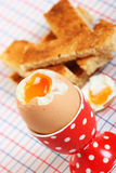 Boiled egg in a spotted eggcup Stock Image