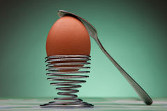 Boiled Egg and stand for eggs Royalty Free Stock Photos