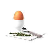 Boiled Egg with Thyme Stock Photos