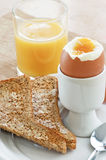 Boiled egg and toast Royalty Free Stock Image