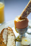Boiled egg and toast. Boiled egg with toast and orange juice Stock Photos