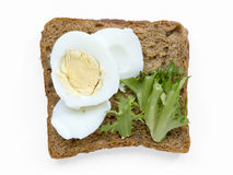 Boiled egg toast Stock Images