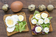 Boiled egg toasts Royalty Free Stock Images