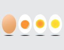 Boiled egg. Vector illustration of boiled egg gray background Royalty Free Stock Photos