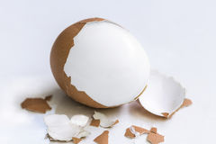 Boiled egg  on white background. Royalty Free Stock Photos