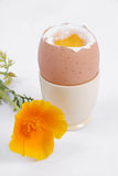 Boiled egg and yellow flower Royalty Free Stock Photography