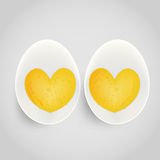 Boiled egg with yolk Royalty Free Stock Image