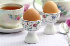 Boiled eggs Stock Images