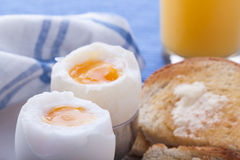 Boiled eggs for breakfast Stock Photography