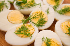 Boiled eggs with dill Stock Images