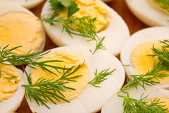 Boiled eggs with dill Stock Photography