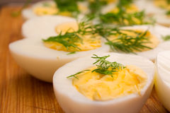 Boiled eggs with dill Stock Photos