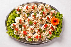 Boiled eggs with fish cream topping royalty free stock images
