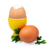 Boiled eggs in orange stand and parsley Stock Photos