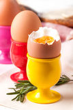 Boiled eggs and rosemary Royalty Free Stock Image