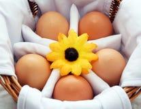 Boiled eggs Stock Photo