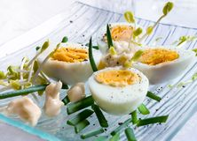 Boiled eggs with sprouts Stock Images
