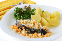 Boiled fish with egg and potato Royalty Free Stock Photos