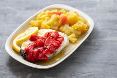 Boiled fish with red pepper, vegetables and olive oil on white dish royalty free stock photos