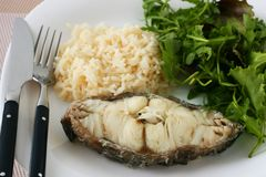 Boiled fish with rice Royalty Free Stock Images