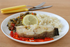 Boiled fish with rice and vegetables Stock Images