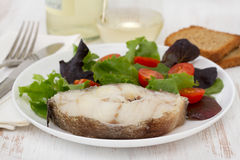 Boiled fish with salad Royalty Free Stock Photos
