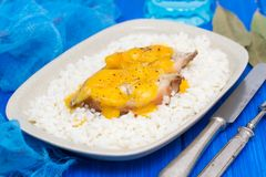 Boiled fish with sauce and boiled rice on white dish Stock Images
