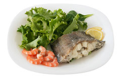 Boiled fish with shrimps and salad Royalty Free Stock Image