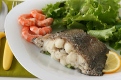 Boiled fish with shrimps and salad Royalty Free Stock Photography