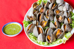 Boiled fresh cockles Royalty Free Stock Image