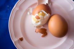 Boiled fresh egg for the breakfast Stock Images