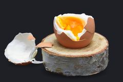 Boiled fresh egg for the breakfast on the wooden birch stand for eggs isolated on dark blue. Broken beige hen egg and pieces of sh. Ells, bright orange yolk royalty free stock photos