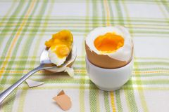 Boiled fresh smash broken egg for the breakfast on the porcelain stand for eggs. Broken beige hen egg and pieces of shells, bright. Liquid orange yolk in the Stock Image