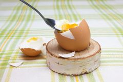 Boiled fresh smash broken egg for the breakfast on the wooden birch stand for eggs. Broken beige hen egg and pieces of shells, bri. Ght liquid orange yolk in the stock photos