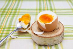 Boiled fresh smash broken egg for the breakfast on the wooden birch stand for eggs. Broken beige hen egg and pieces of shells, bri. Ght liquid orange yolk in the stock image