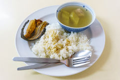 Boiled of Gourd with steamed rice Stock Photo