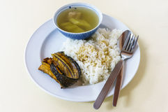 Boiled of Gourd with steamed rice Stock Image