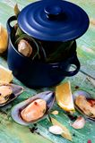Boiled Green Mussels Stock Photos
