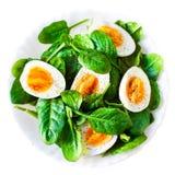 Boiled ha diviso in due le uova sul piatto decorato con l'isolante delle foglie degli spinaci Fotografia Stock